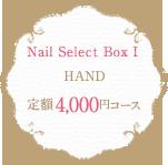 Nail Select Box 1 HAND 定額4,000円コース