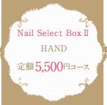 Nail Select Box 2 HAND 定額5,500円コース