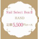 Nail Select Box 3 HAND 定額5,500円コース